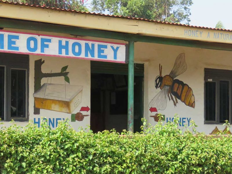 BBC Honey processors Fort Portal Uganda