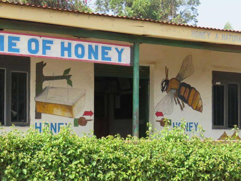 BBC Honey Fort Portal Uganda