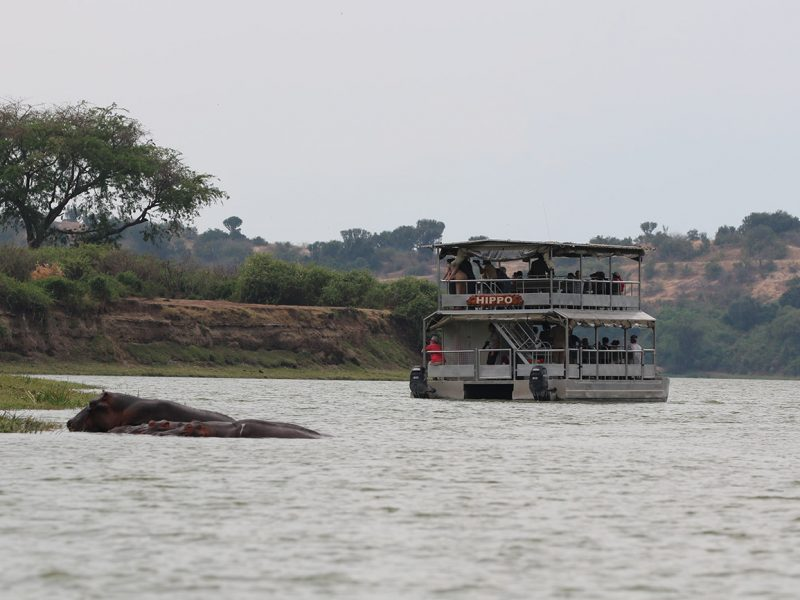 Boat Queen in Uganda looking at hippos.