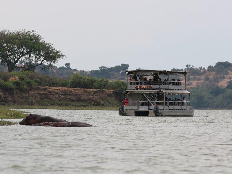 Boat Queen in Uganda looking at hippos.