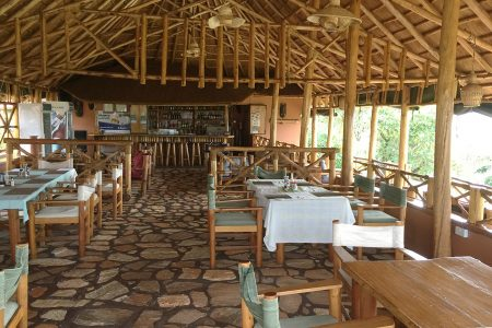 Chimpanzee Forest Guest House bar and restaurant
