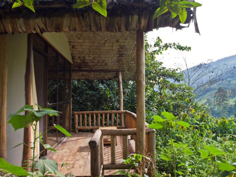 Engagi Lodge in Uganda's Bwindi Impenetrable Forest National Park.