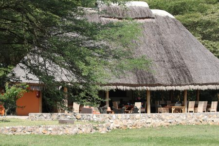 Enjojo Lodge in Ishasha sector of Queen Elizabeth national park Uganda
