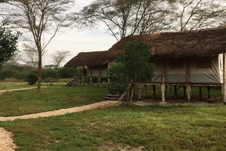 Enjojo Lodge tents Queen Elizabeth National Park