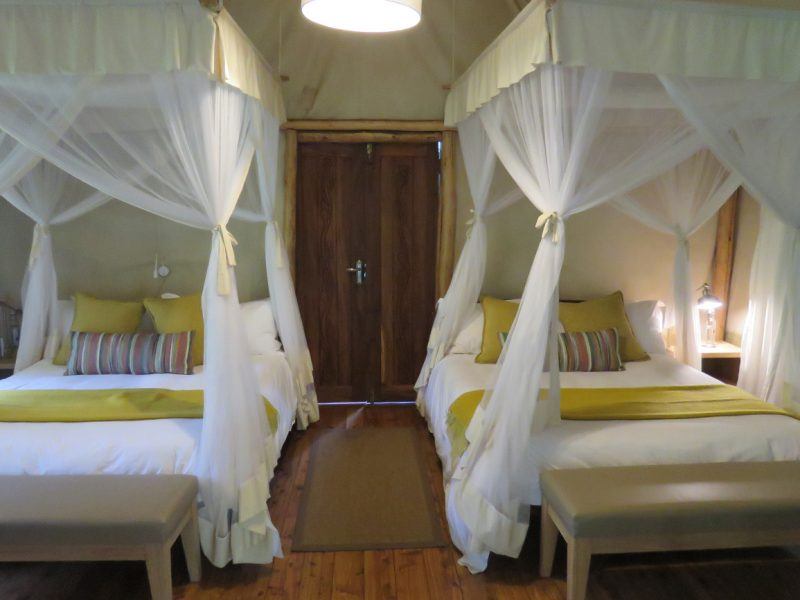 Gorilla Forest Camp tent room, Bwindi Impenetrable National Park, Uganda.
