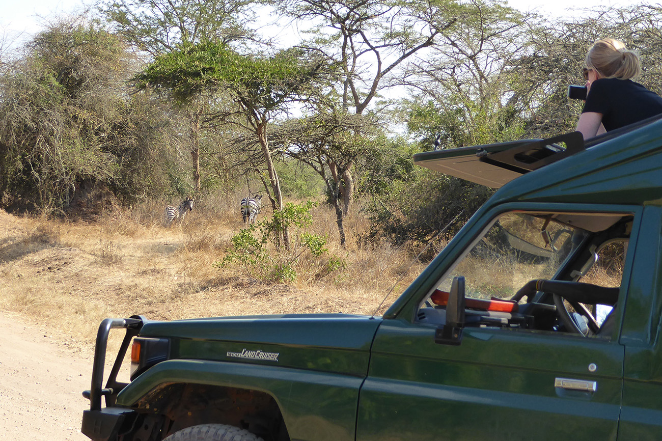 Game drive in Lake Mburo national park Uganda