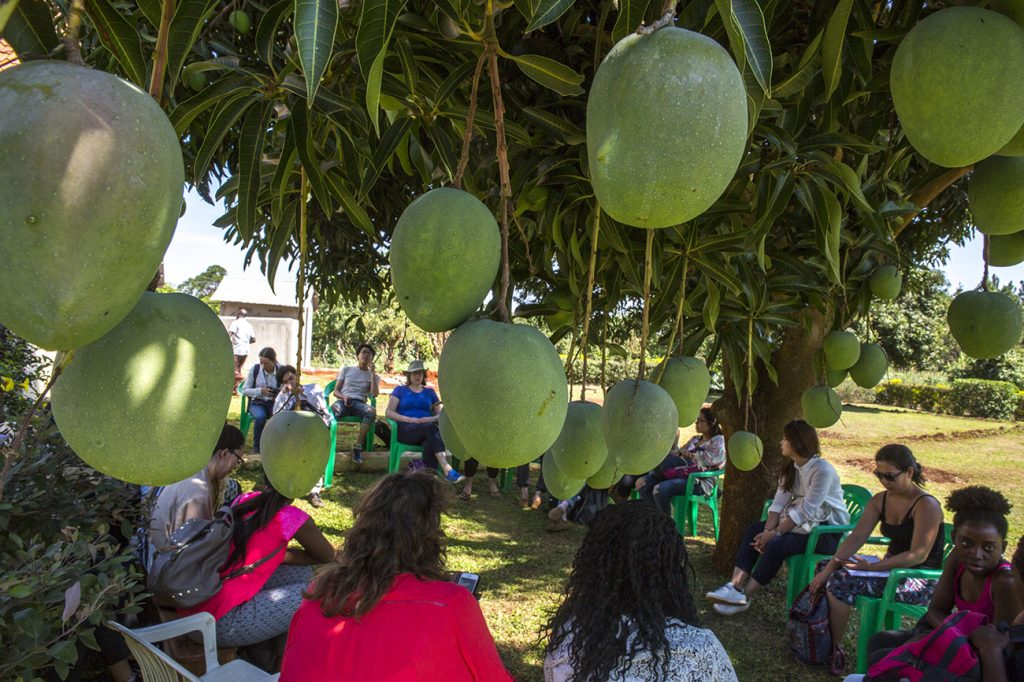 University field course visit to mango farm in Uganda
