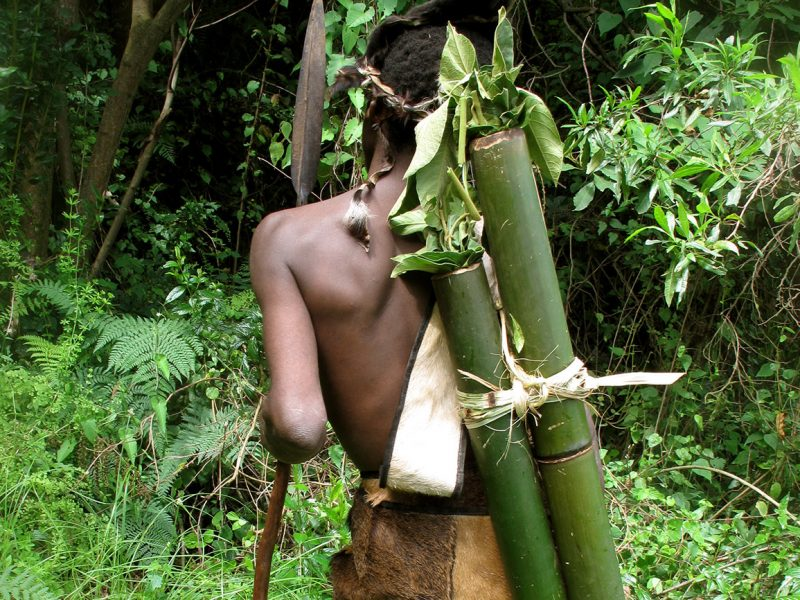 Experience tribal culture with the Batwa ('forest-keeper' pygmies)