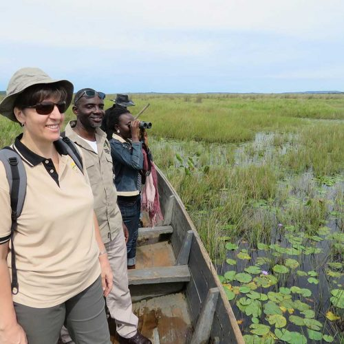 Birding at Mabamba Swamp, Uganda