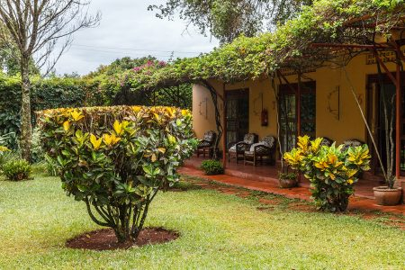 Entebbe Airport Guest House gardens, Uganda