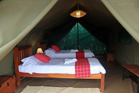 Kidepo Savannah Lodge twin bed tent