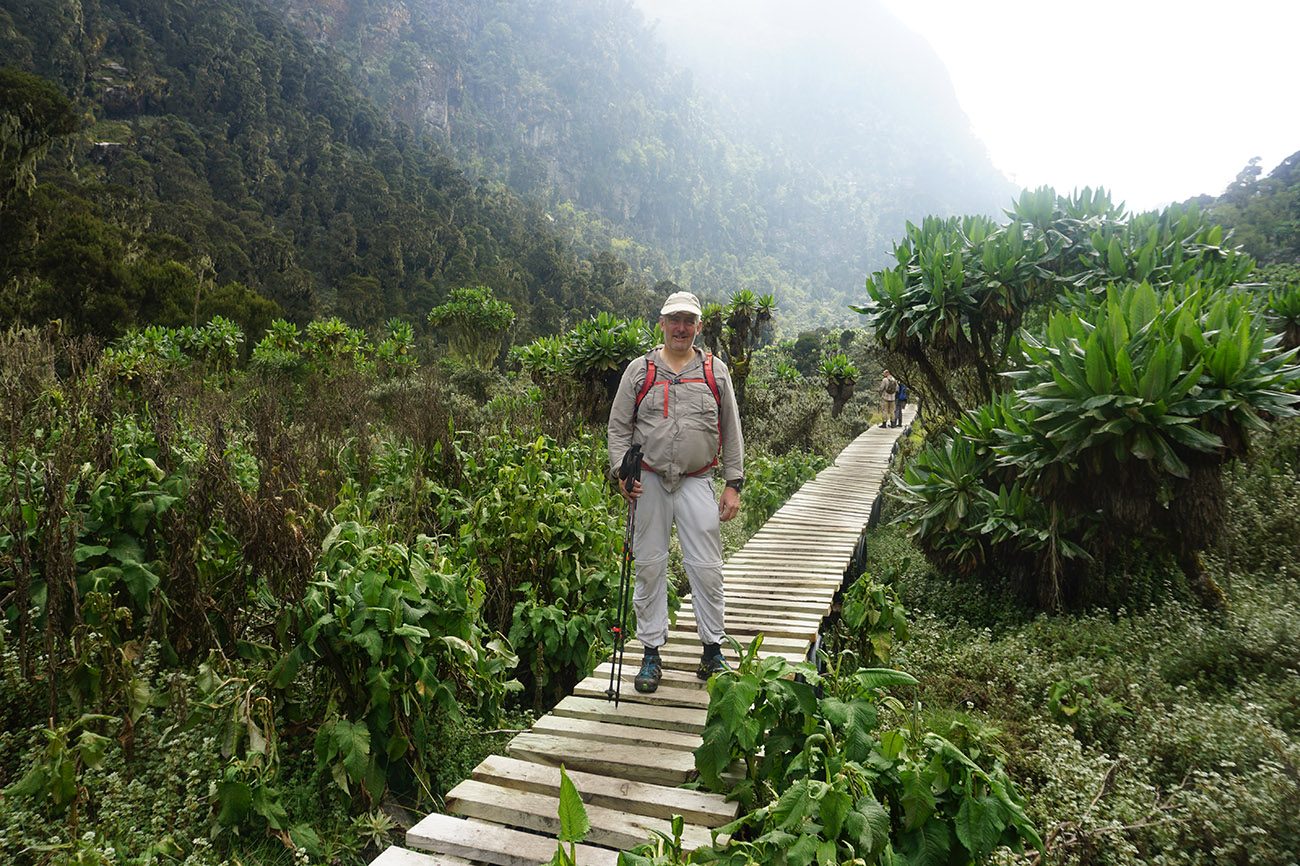 Hiker In Mount Rwenzori in Uganda.