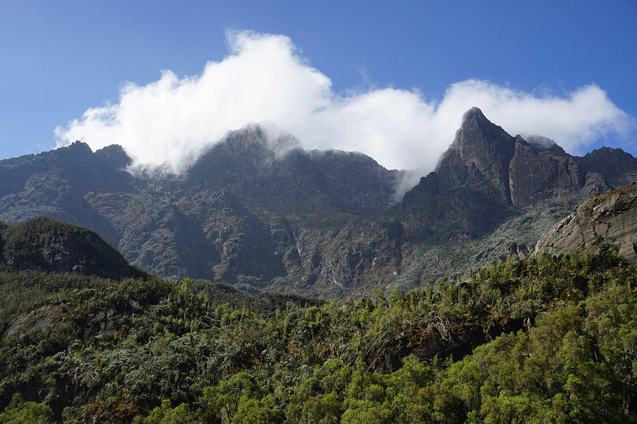 Rwenzori mountain, Uganda