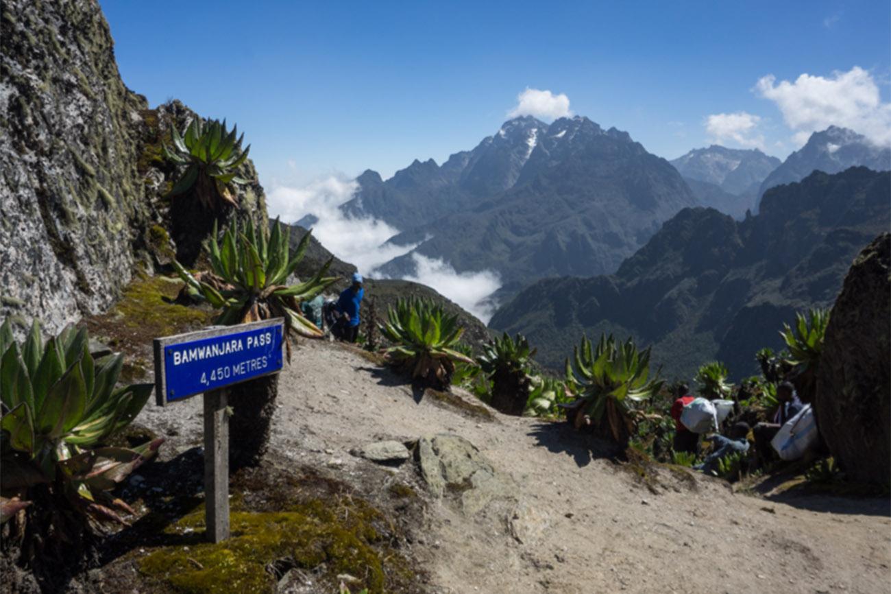 Mount Stanley Trek Uganda 6