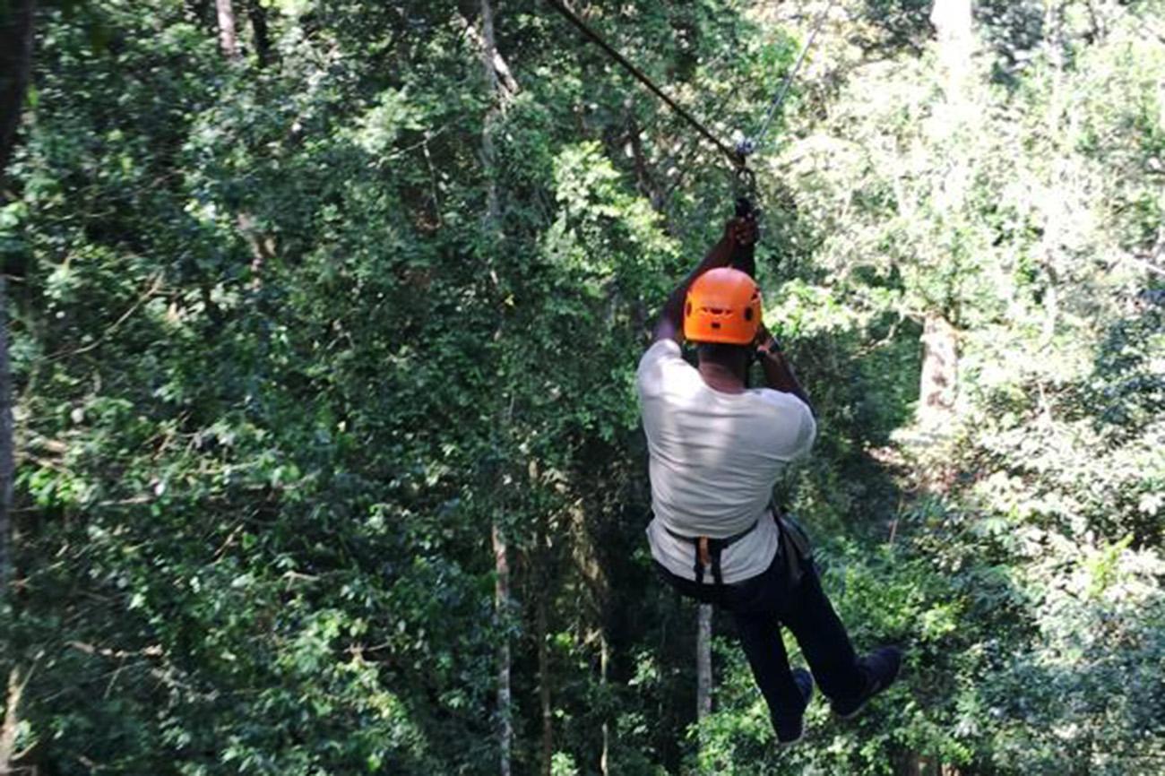 Zip lining in Mabira forest, Uganda.