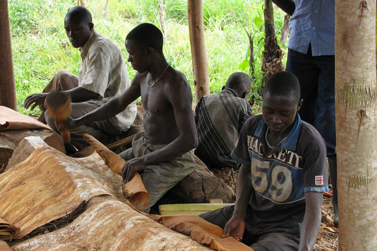 Barkcloth makers in Uganda.