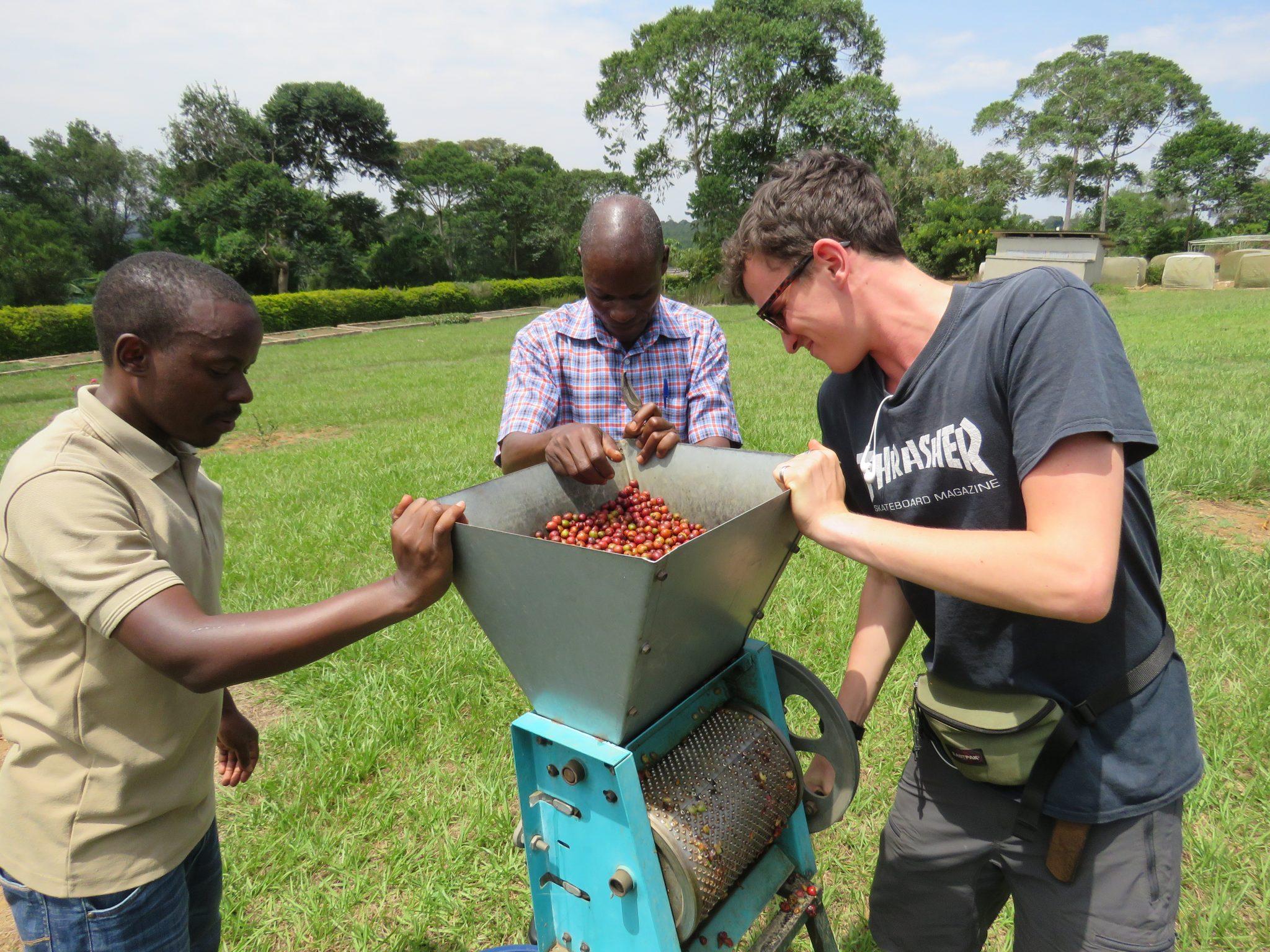 Wet processing on coffee farm tour Uganda